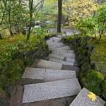 Stone Steps in Japanese Garden — Stock Photo