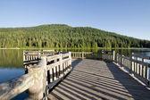 Muelle de pesca en el lago trillium — Foto de Stock