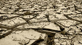 Dried mud and river silt following huge floods Queensland — Stock Photo