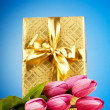 thumbnail of Celebration concept - gift box and tulip flowers