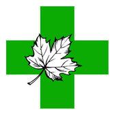Maple leaf on green cross