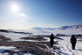 Barren Winter Landscape