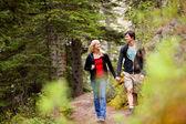 Spaziergang Wald paar