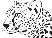 Abstract face Leopardvector illustration