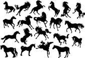 Illustrazione con collezione di sagome di cavallo isolato su sfondo bianco