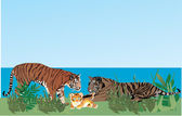 Illustration with tiger family in grass