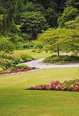 Park garden landscape
