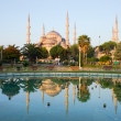 thumbnail of Blue Mosque at Dawn