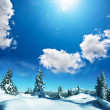 thumbnail of Winter forest