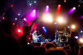 Dav fanoušků na koncertech