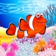 thumbnail of Clown fish