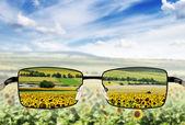 Sluneční brýle. koncept - brýle pro chudé vidění