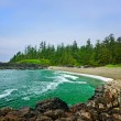 thumbnail of Coast of Pacific ocean in Canada