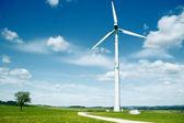 Wind Turbine in a summer landscape