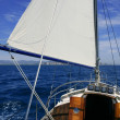 thumbnail of Sailboat sailing blue sea on sunny summer day