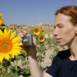 thumbnail of Cute woman photographer in nature sunflower field