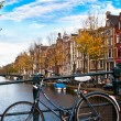 thumbnail of Bicycle in amsterdam