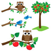 Set of summer nature elements: branches with sitting owls and birds and apple tree