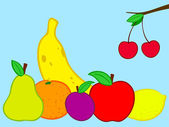Fruits still life doodle