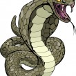 thumbnail of Cobra snake about to strike illustration