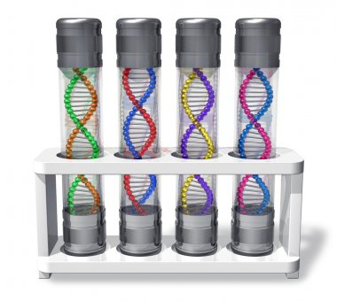 Set of capsules with DNA molecules