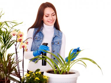 Woman looking after houseplant