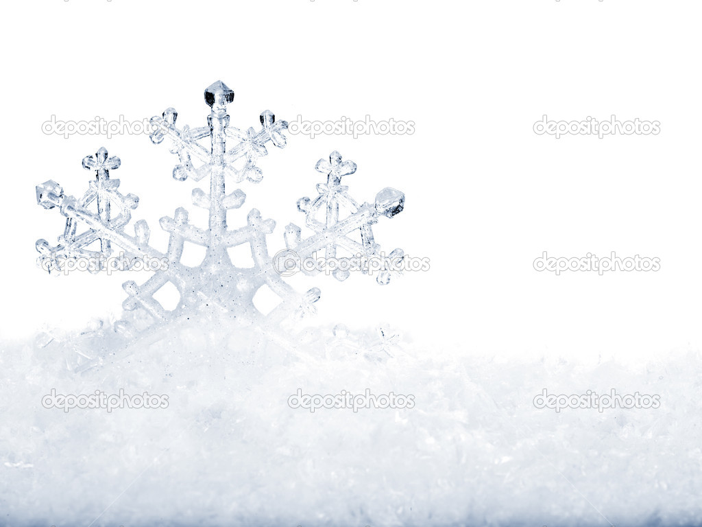 Snowflake in snow.