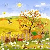 Fotografia albero autunno paesaggio rurale