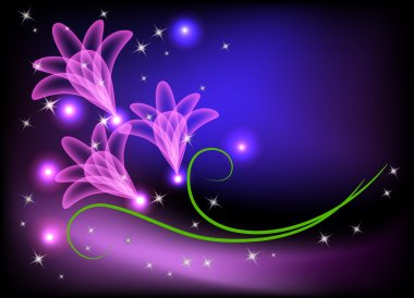 Transparent flowers and stars