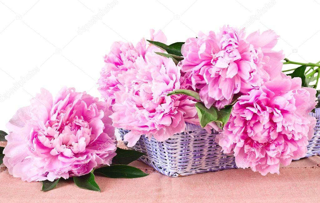 depositphotos_6142762-stock-photo-basket