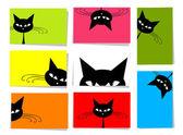 Fényképek Vicces macskák, 10 kártyát a design, a hely a szöveg beállítása