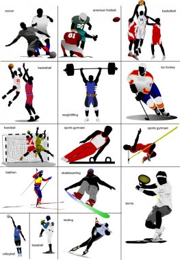 Some kinds of sports. Collection. Colored vector illustration