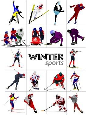 Big set of Winter sports illustration