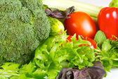 Fresh and juicy vegetables isolated