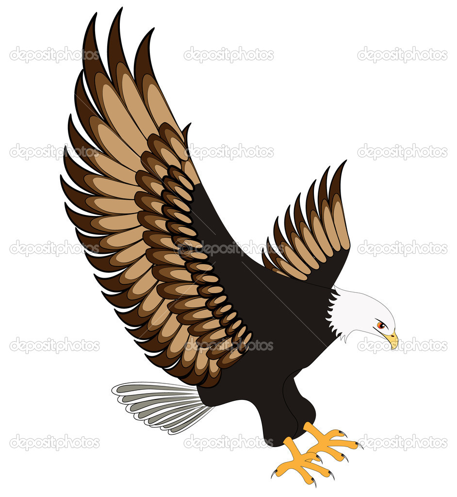 Flying eagle insulated on white background stock vector flying eagle insulated on white background stock vector altavistaventures Images
