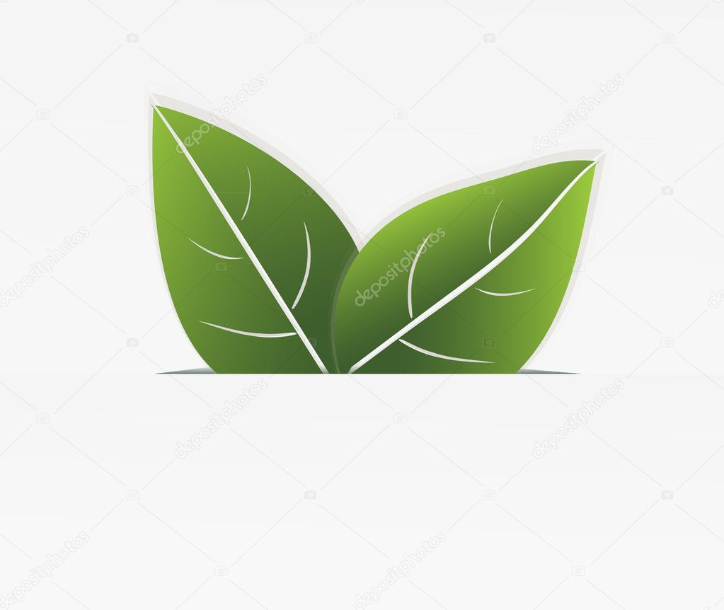 Two green leaves which are sticking out of the cut paper. eps10