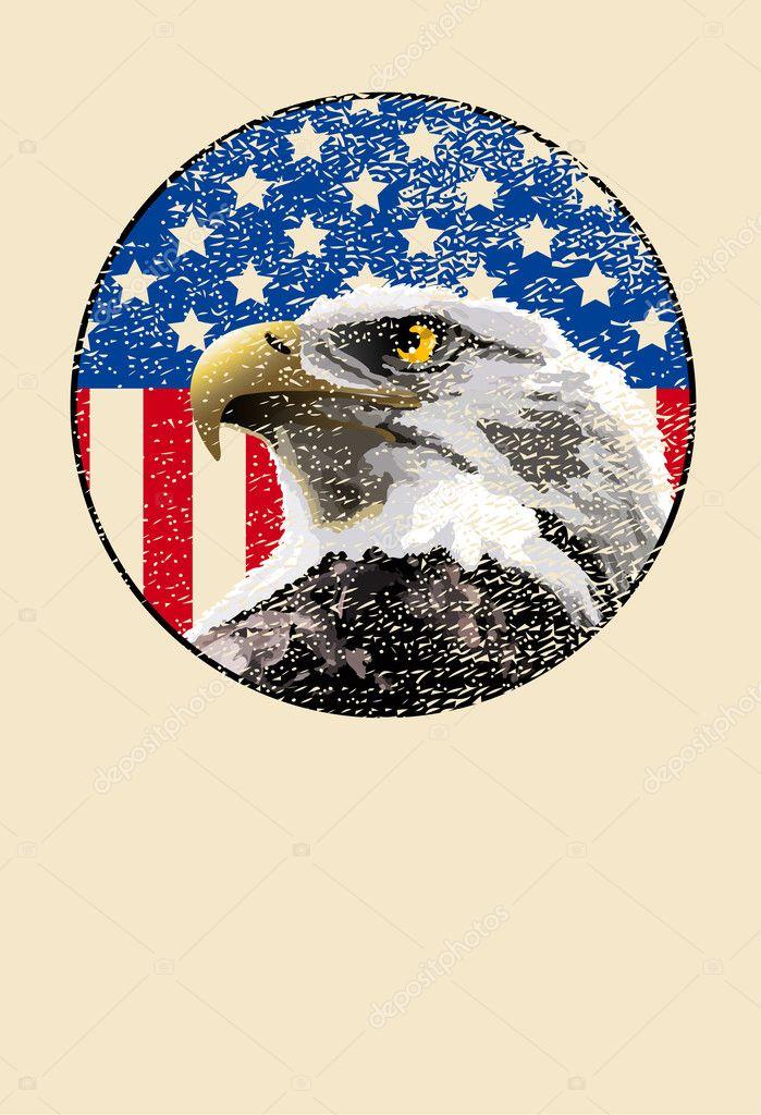 Vector: copa aguila | Águila calva bandera americana — Vector de ...