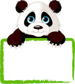 Photo Cute Panda Card