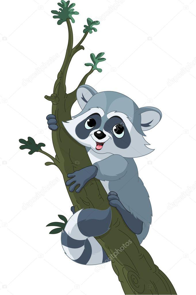 Procione cartone animato divertente sull albero