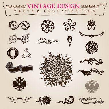 Calligraphic elements vintage heraldic. Vector symbols