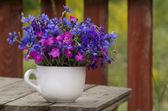 divoké květiny, karafiát a chrpy