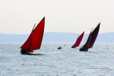Galway hookers at Ocean race