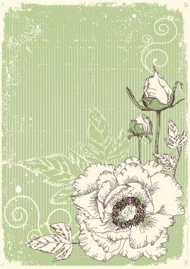 Flowers grunge postcard with peonies