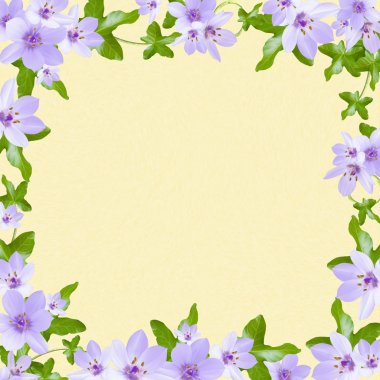Floral greeting card with place for your text