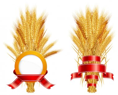 Ears of wheat & ribbon