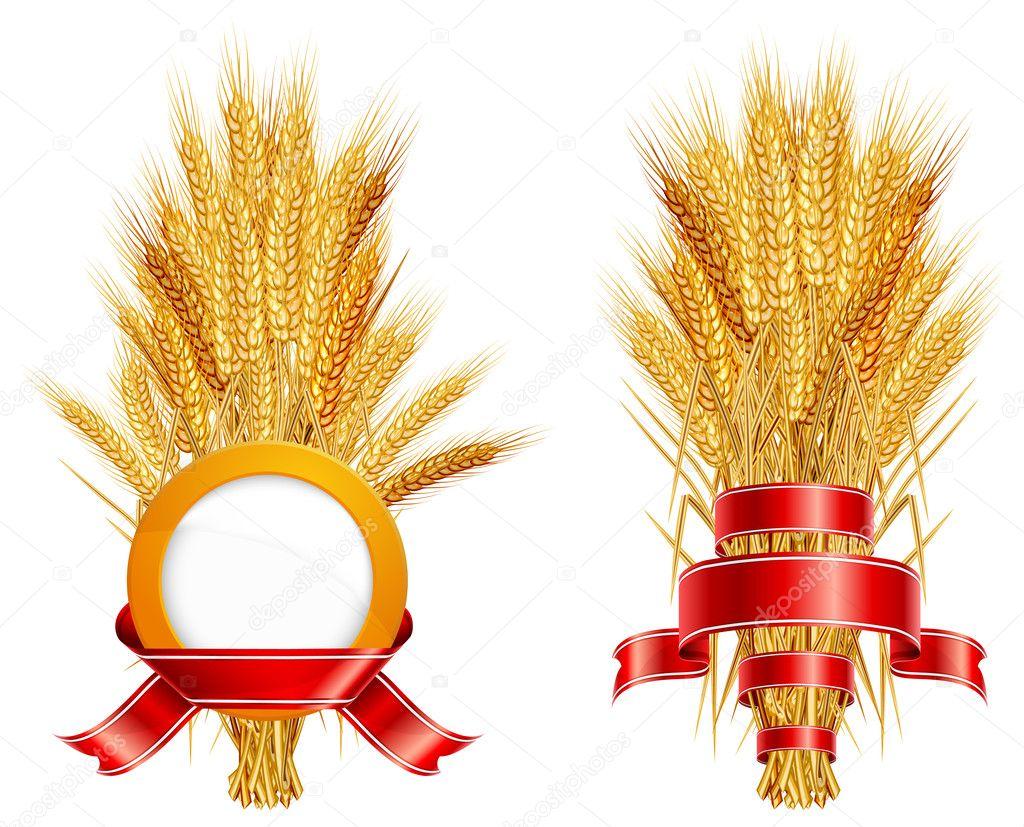 Ears of wheat & ribbon