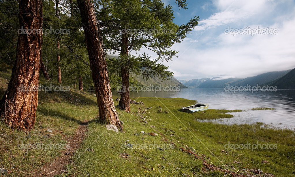 Path near lake