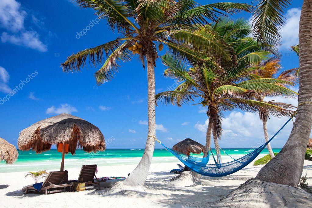 Beautiful Caribbean beach