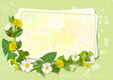 Greeting card with with daisies