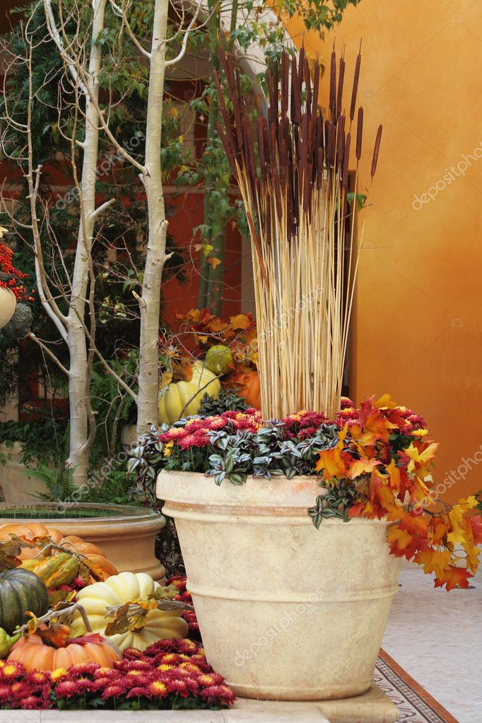 Winter garden in a hotel